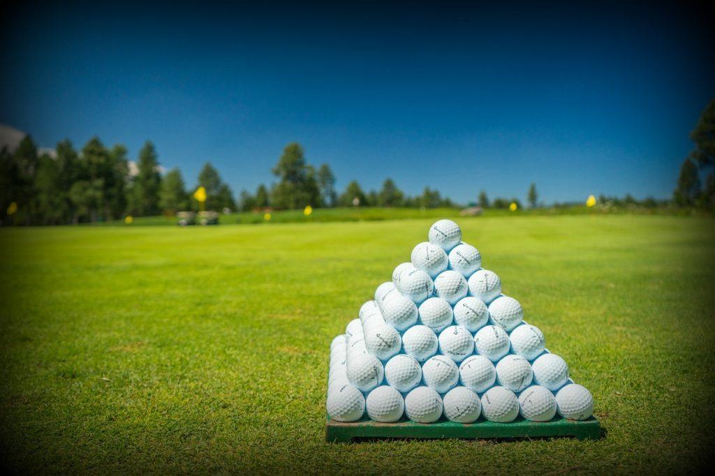 Wolverine Golf Club