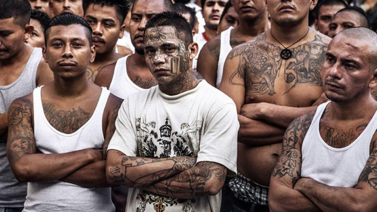 What You Need to Know About Prison Gang Mara Salvatrucha: MS-13 ...