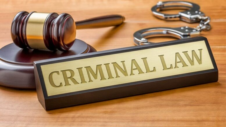 The Main Principles of Criminal Law